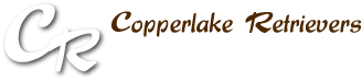 Copperlake Retrievers, Golden Retriever kennel